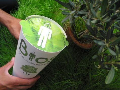 biodegradeable urn